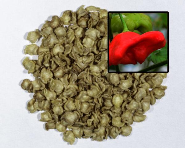 bishop's crown pepper