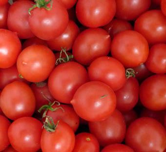 TOMATO SEEDS : Riesentraube (Giant) Cherry Tomato
